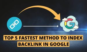ndexer limits the number of backlinks to 300 links / day.