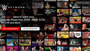 changed how sports and entertainment videos are online distributed with WWE Network